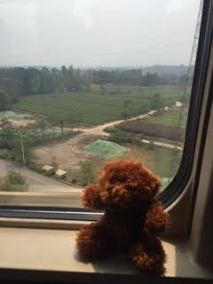 Ed on Train